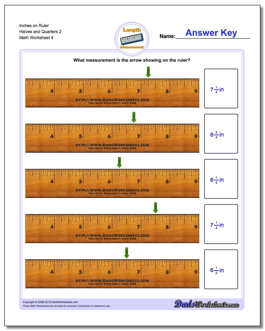 Inches on Ruler Halves and Quarters 2 Worksheet