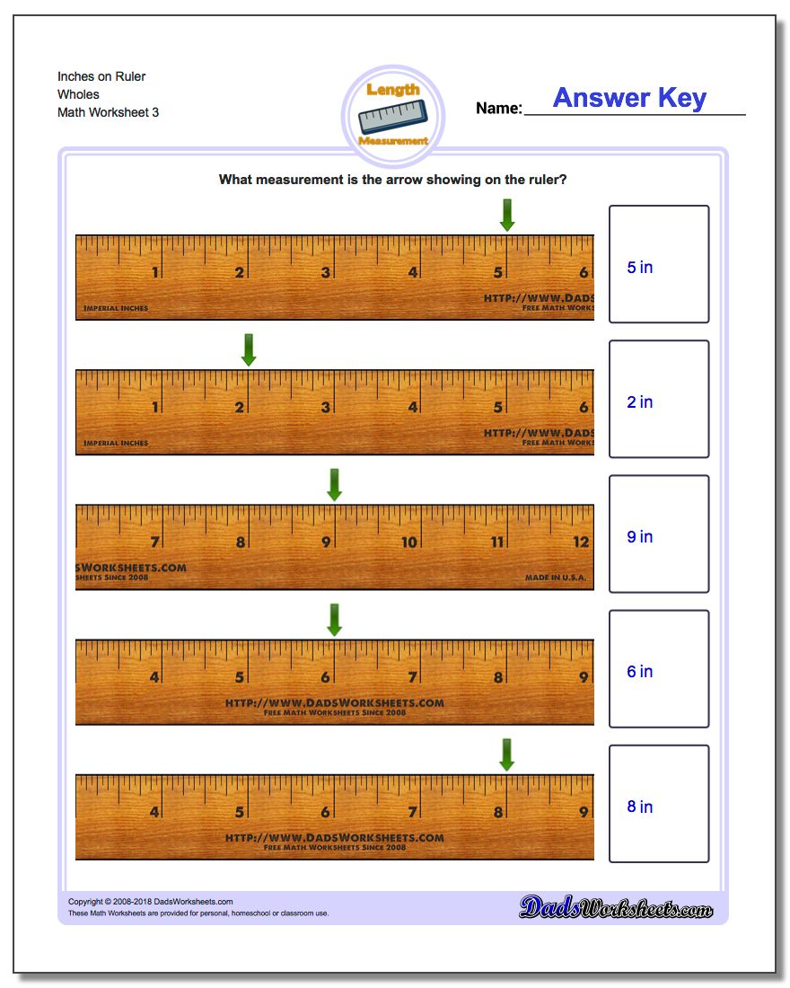 Inches on Ruler Wholes Worksheet