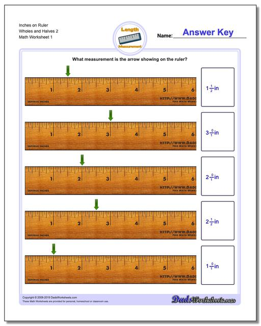 Inches Measurement Worksheets on Ruler Wholes and Halves 2