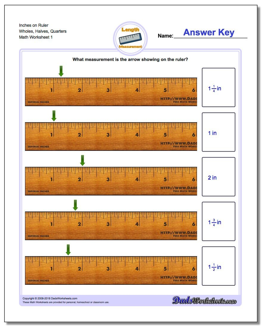 Inches Measurement Worksheet on Ruler Wholes, Halves, Quarters