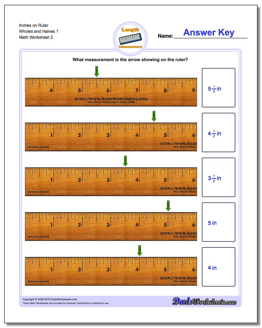 Inches on Ruler Wholes and Halves 1 www.dadsworksheets.com/worksheets/inches-measurement.html Worksheet