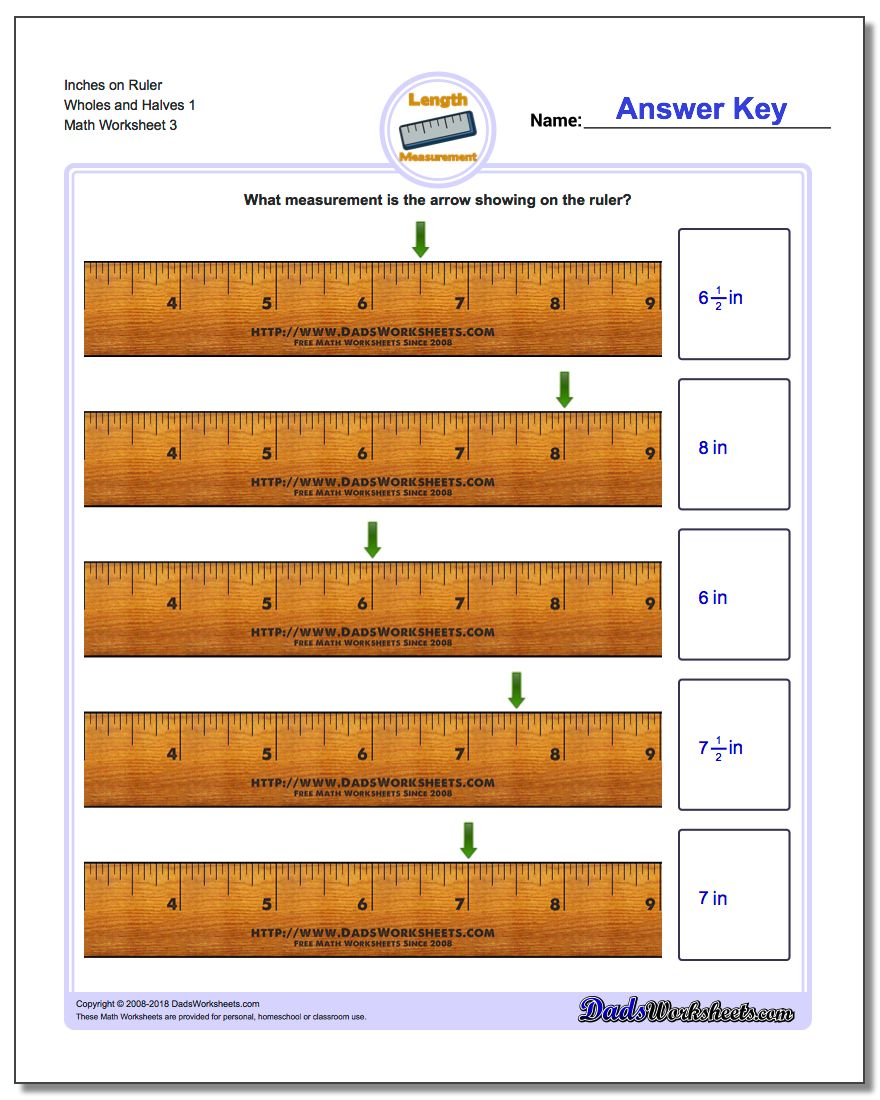 Inches on Ruler Wholes and Halves 1  Worksheet