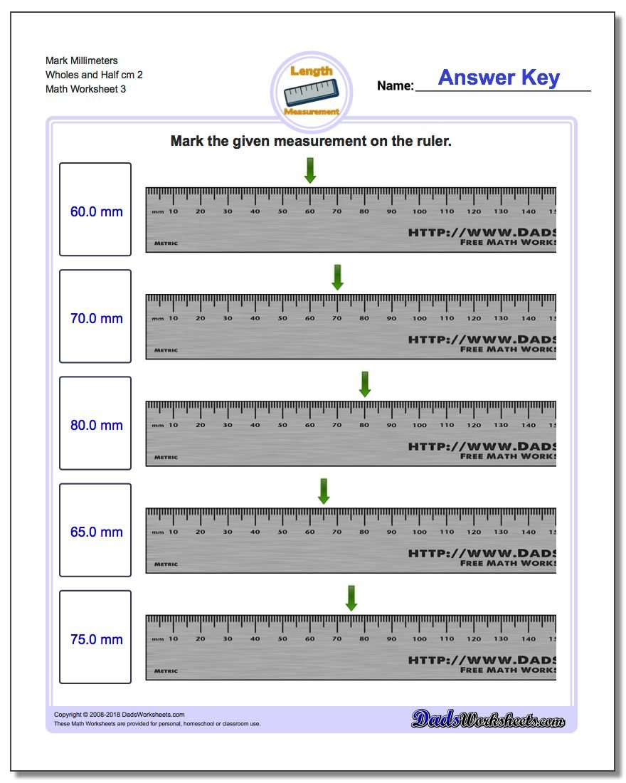 Mark Millimeters Wholes and Half cm 2  Worksheet
