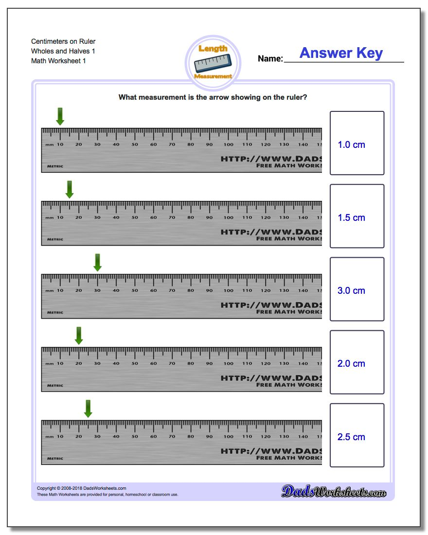 Centimeters on Ruler Wholes and Halves 1 Metric Measurement Worksheet
