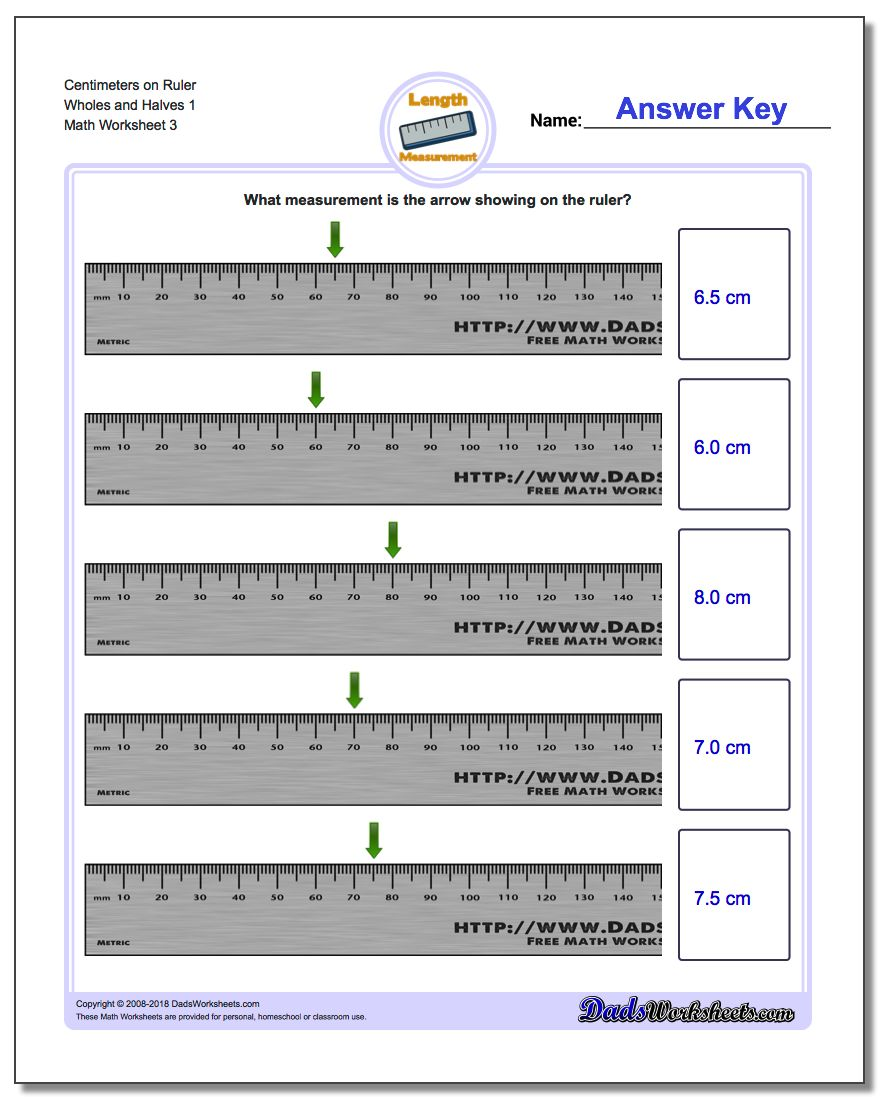 Centimeters on Ruler Wholes and Halves 1  Worksheet